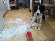 Remi likes flour