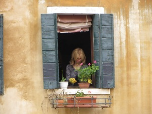 Venician Window Garden