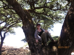 Akasha in an Acacia tree.
